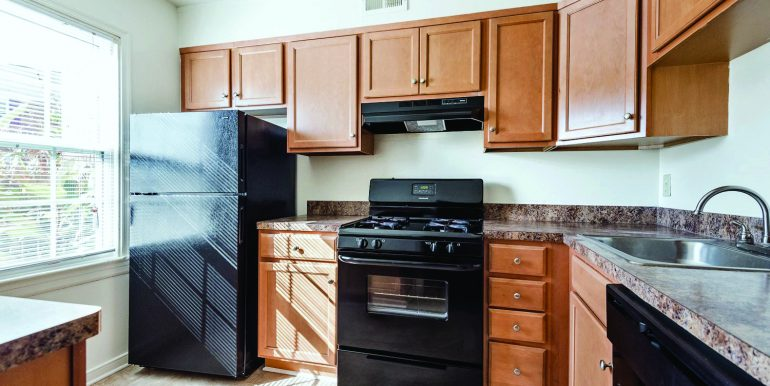 View More: http://saraeastman.pass.us/thalhimer-virginia-apartments